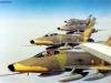xx_f-100d_patrouille_requin
